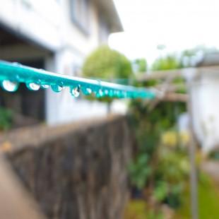 コドモハワイ | kodomo-hawaii.com